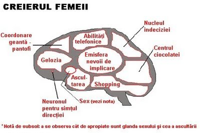 CREIERUL FEMEII EBOOK DOWNLOAD