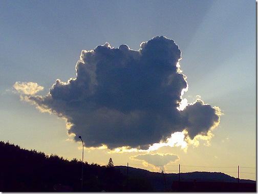 Foto: Nori ciudati Touchofadream - Lifestyle, secrete de sanatate ...