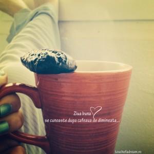 lucruri despre cafea