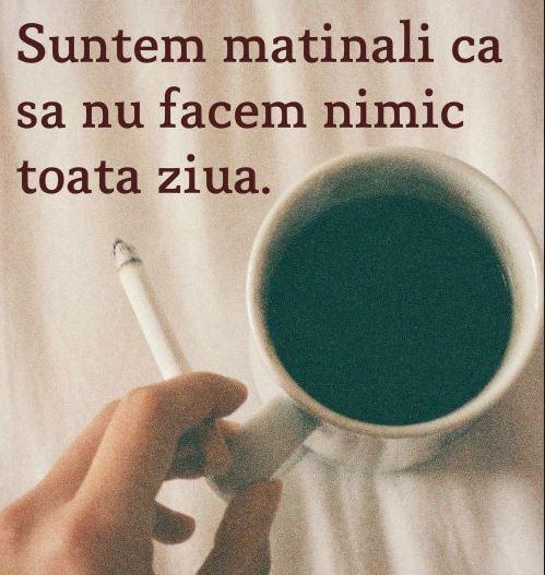 citate despre cafea Citate Cafea Touchofadream   Lifestyle, secrete de sanatate si  citate despre cafea