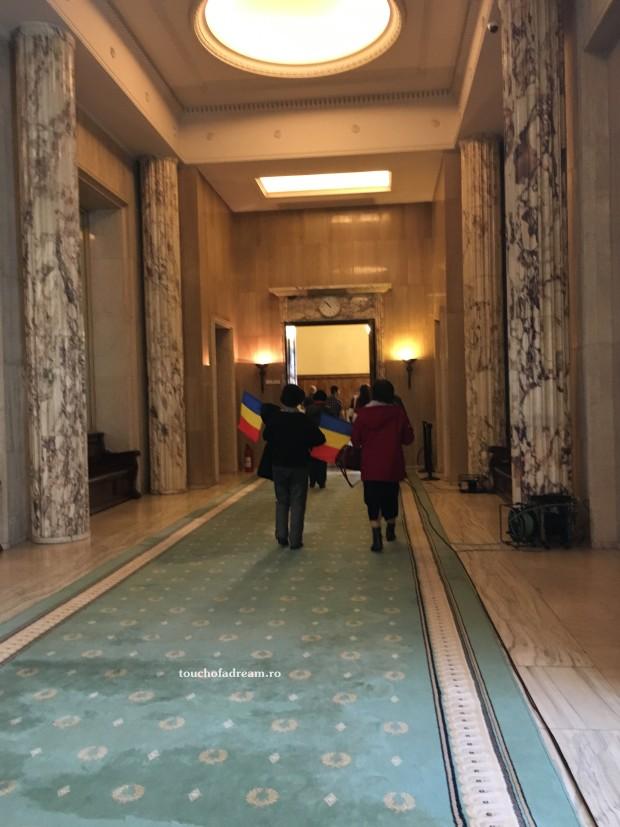 Palatul Victoria covoare murdare