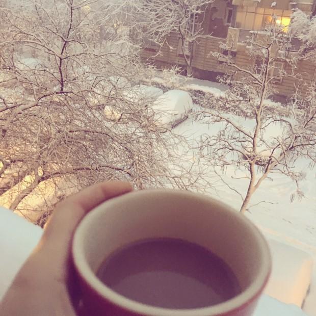 dimineti de iarna 2016