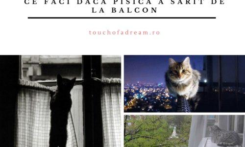 Ce faci daca pisica a sarit de la balcon