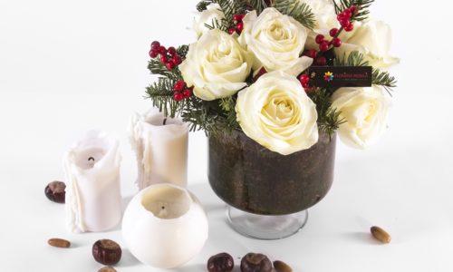 FlorăriaMobilă.ro – Cadouri de Crăciun ideale pentru orice vârstă