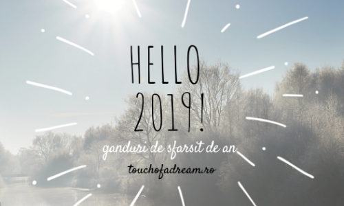 Realizările lui 2018, rezoluțiile lui 2019